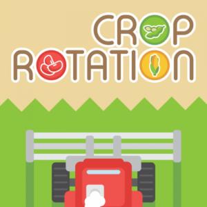 crop_capa1